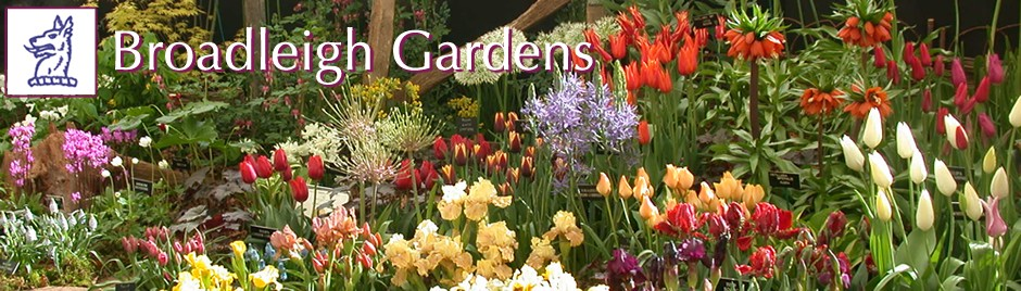 Catalogue Broadleigh Gardens
